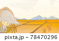 Rice field scene in engraving style 78470296