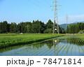6月の田園風景 田植え 軽トラック 78471814