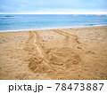 ウミガメの足跡 78473887