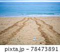 ウミガメの足跡 78473891