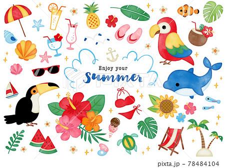 水彩 夏のトロピカルイラスト 78484104
