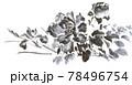 牡丹 紫陽花 アイリス 墨絵イラスト 78496754