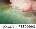 米素材 78500998