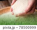 米素材 78500999