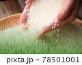 米素材 78501001