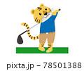 ゴルフのスイングをするトラ 78501388