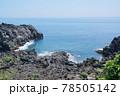 城ヶ崎海岸 78505142
