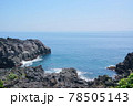 城ヶ崎海岸 78505143