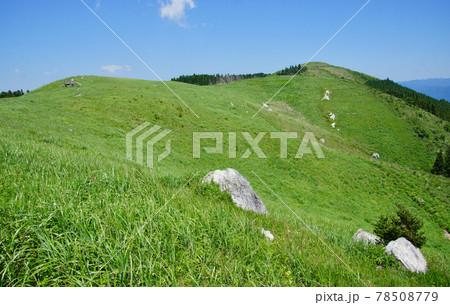初夏の生石高原の風景 和歌山県海草郡紀美野町 78508779
