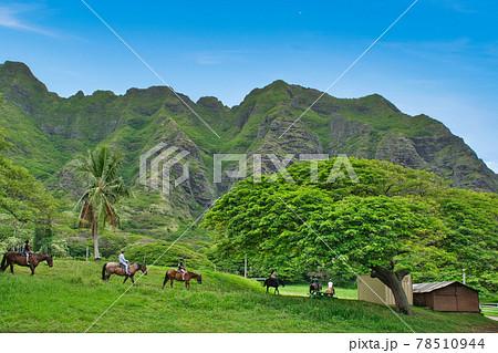 ハワイ オアフ島 クアロア牧場 乗馬ツアー 78510944