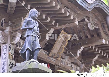 高尾山薬王院 神変堂(神変大菩薩) 78530545