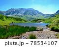 夏の立山高原の緑が池 78534107