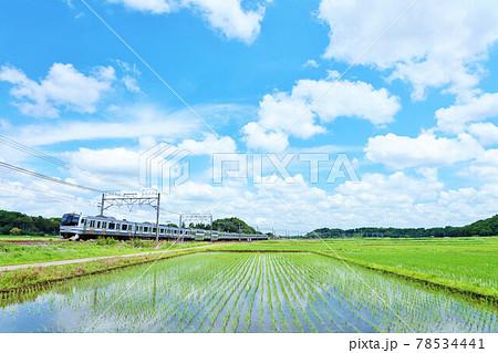 千葉県 爽やかな青空と水田風景 そして総武快速電車が行く 78534441