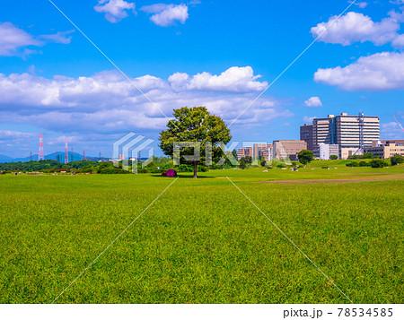 淀川河川公園 枚方地区 78534585