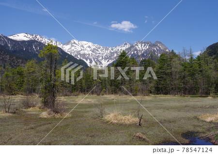 田代湿原と北アルプス(穂高岳方面)と飛行機雲 撮影場所:上高地(長野県) 78547124