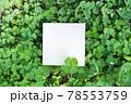 シロツメクサを背景に四つ葉のクローバーを周りに添えた空白のタイトルフレームのモックアップ 78553759