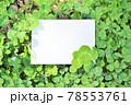4つ葉と5つ葉のクローバーを周りに添えた白いカードのスペースのモックアップ 78553761