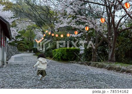 夕暮れ時、公園の桜祭りで走る子供の後姿 78554162