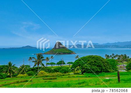 ハワイ オアフ島 クアロアビーチパークから望むチャイナマンズハット島 78562068
