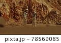 Male and female cosmonauts walking on Mars 78569085