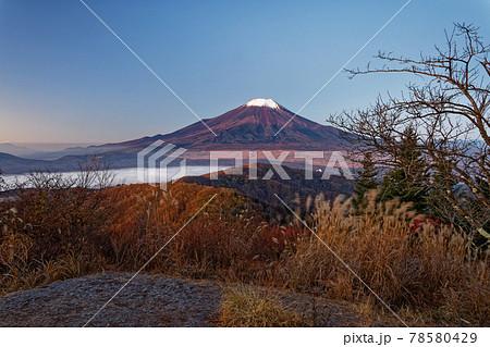 山中湖村・石割山から見る早朝の富士山 78580429