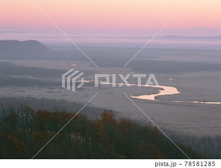 朝もやの釧路湿原(北海道・鶴居村) 78581285