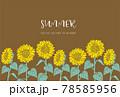 ひまわりのイラストの夏イメージの背景素材 78585956
