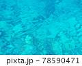 揺らめく海面 78590471