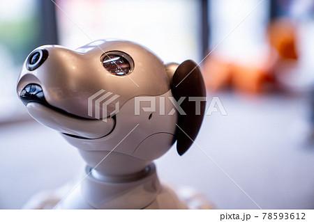近未来の犬型ロボットと過ごす日常【ペットの在り方】顔のアップ 78593612
