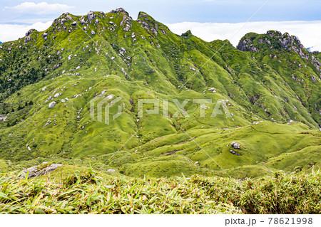 真夏の洋上アルプス世界自然遺産屋久島。永田岳の絶景 78621998