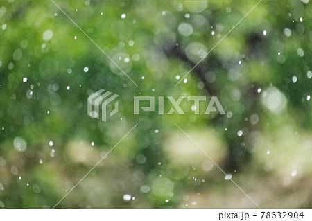 日に照らされ輝きながら落ちる雨粒 78632904