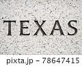 """Texas"" State Name Engraving 78647415"