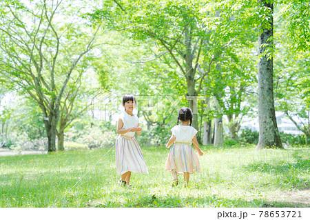草原 森林 姉妹 女の子 自然 78653721