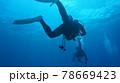 海中を泳ぐダイバーと太陽の光 78669423