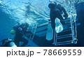 海中を泳ぐダイバーと太陽の光 78669559