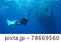 海中を泳ぐダイバーと太陽の光 78669560