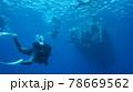 海中を泳ぐダイバーと太陽の光 78669562