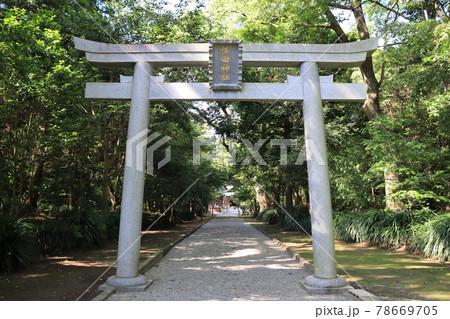 宮崎のパワースポット江田神社の鳥居 78669705