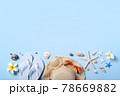 夏 サマーイメージ 夏イメージ 78669882