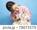 犬の診察をする女性獣医師 78673579