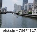 写真素材 水都大阪 78674317