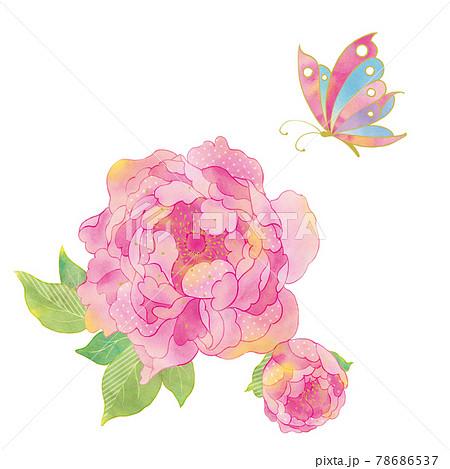 牡丹に蝶 和モダン 78686537