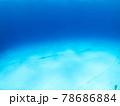 白い砂地に埋まる海底ケーブル (プラヤ・デル・カルメン、メキシコ) 78686884
