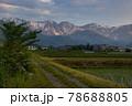 新緑と美しい白馬三山の朝焼け 長野県白馬村 78688805