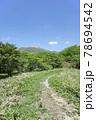 栃木県那須の森の中の小道 78694542