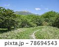 栃木県那須の森の中の小道 78694543