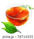 紅茶と若葉 78714355