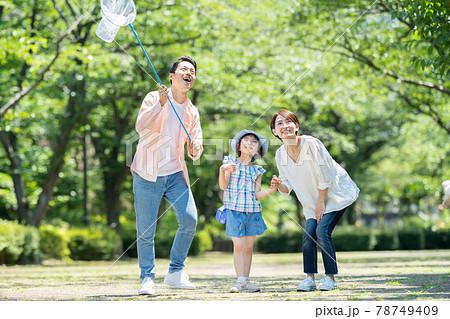 親子 夏休み 虫取り 子供 78749409