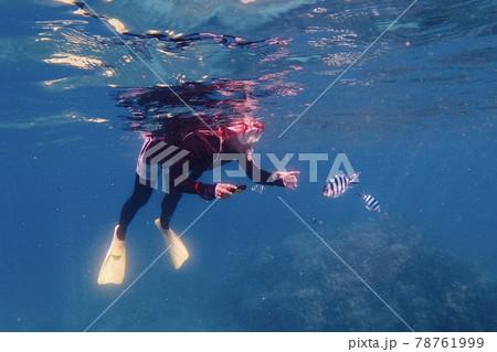 沖縄離島の海でシュノーケルをする女性と群がる魚 78761999
