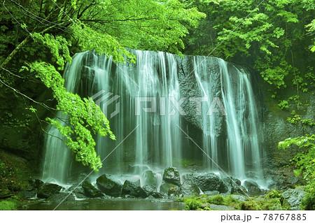 裏磐梯の達沢不動滝 78767885